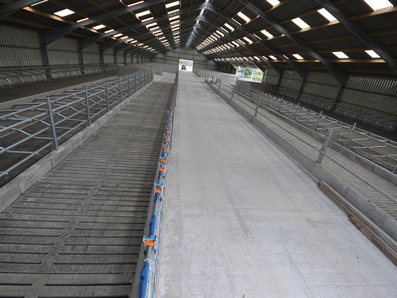 New Dairy Unit for Youngstock (Heifers) Dumfriesshire