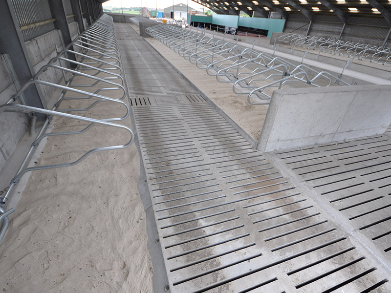Precast Cubicle Kerbs used to from sandbeds in new dairy unit