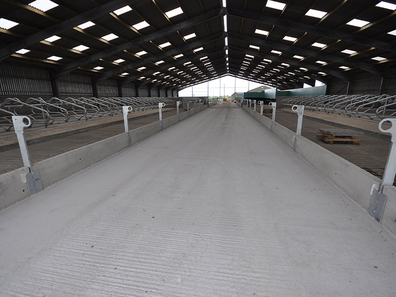 Prestressed Passage Covers used to form central feed passage in new Dairy Unit