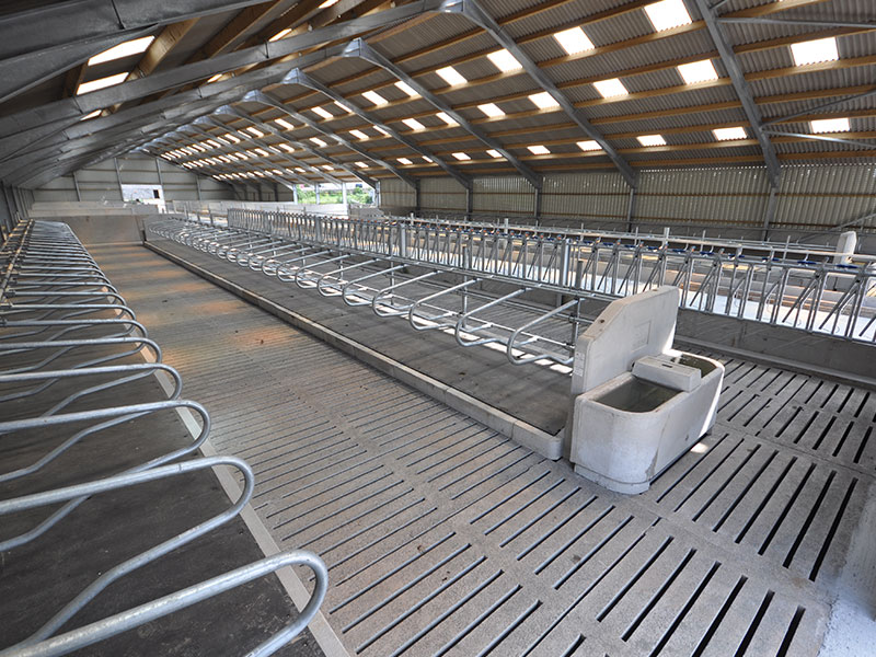 Suspended Floor in New Calf Shed in Wigtown