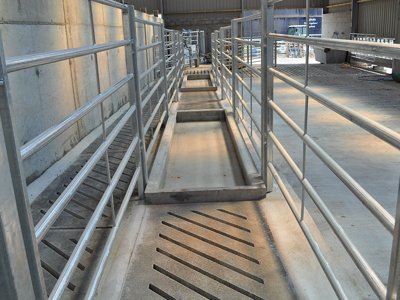 Concrete Cattle Cubicles Water Troughs Feed Channels